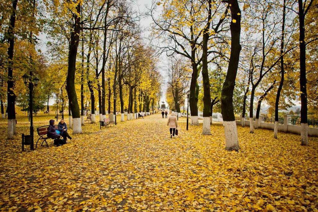 Владимир в золоте 03