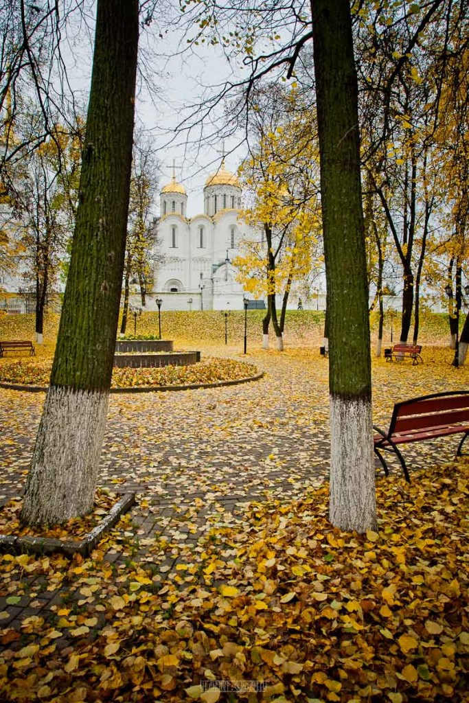 Владимир в золоте 06