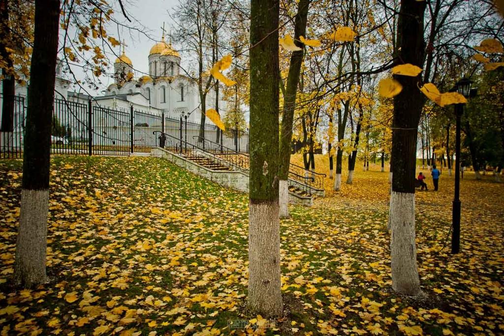 Владимир в золоте 09