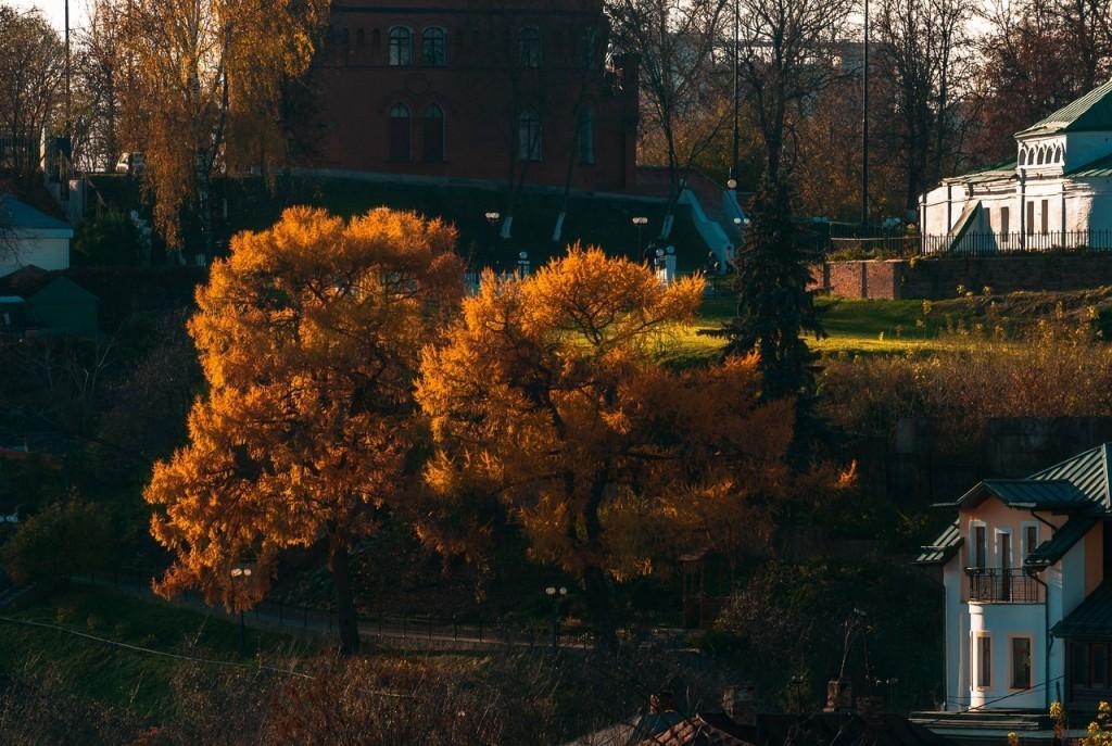 Золотая осень во Владимире 2016 02