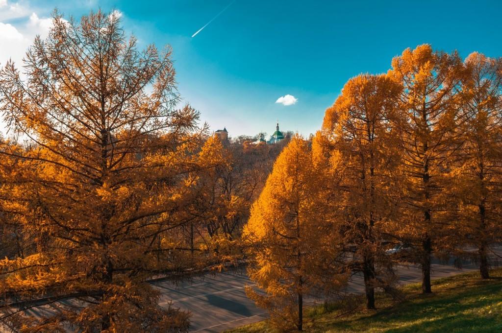 Золотая осень во Владимире 2016 06