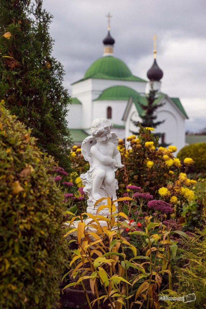 Осенние красоты Мурома Александра Каменского 02