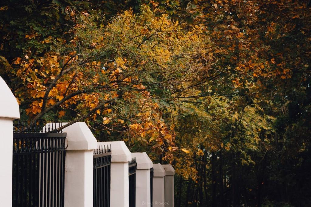 Осенние пейзажи Владимира от Сергея Кравцова 08