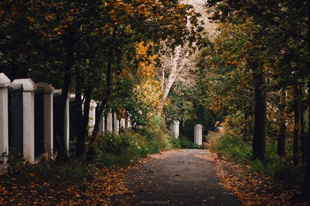Осенние пейзажи Владимира от Сергея Кравцова 10