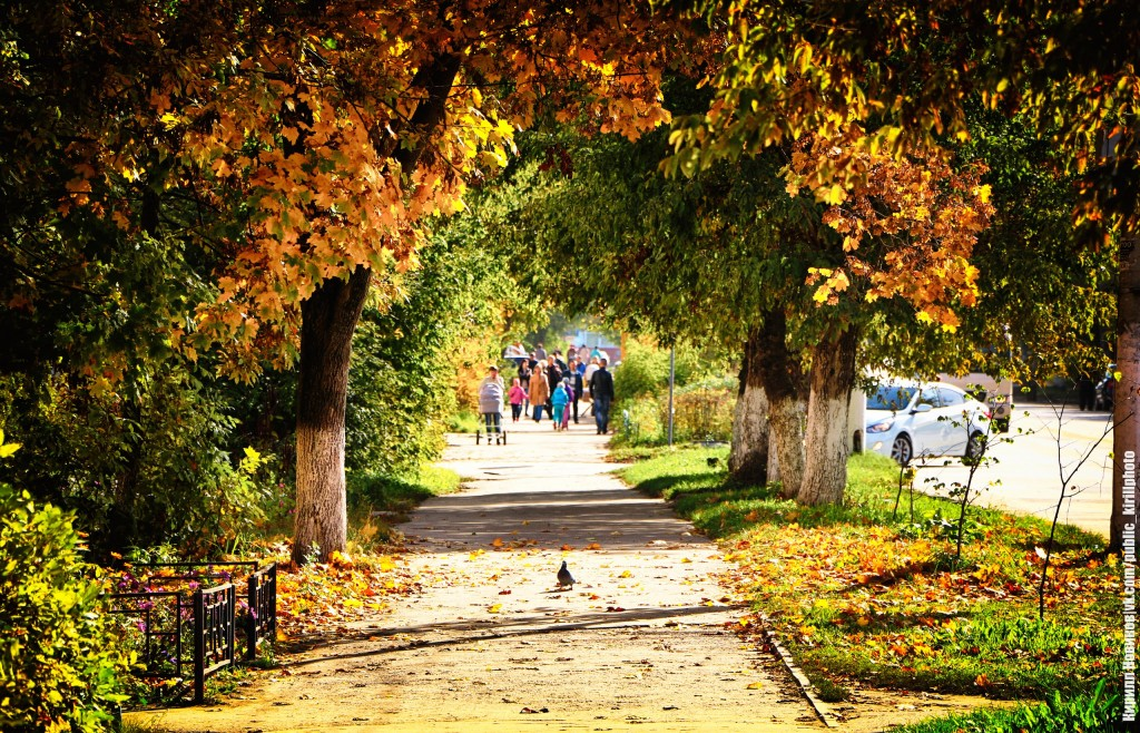 Осенний солнечный день в Собинке 05