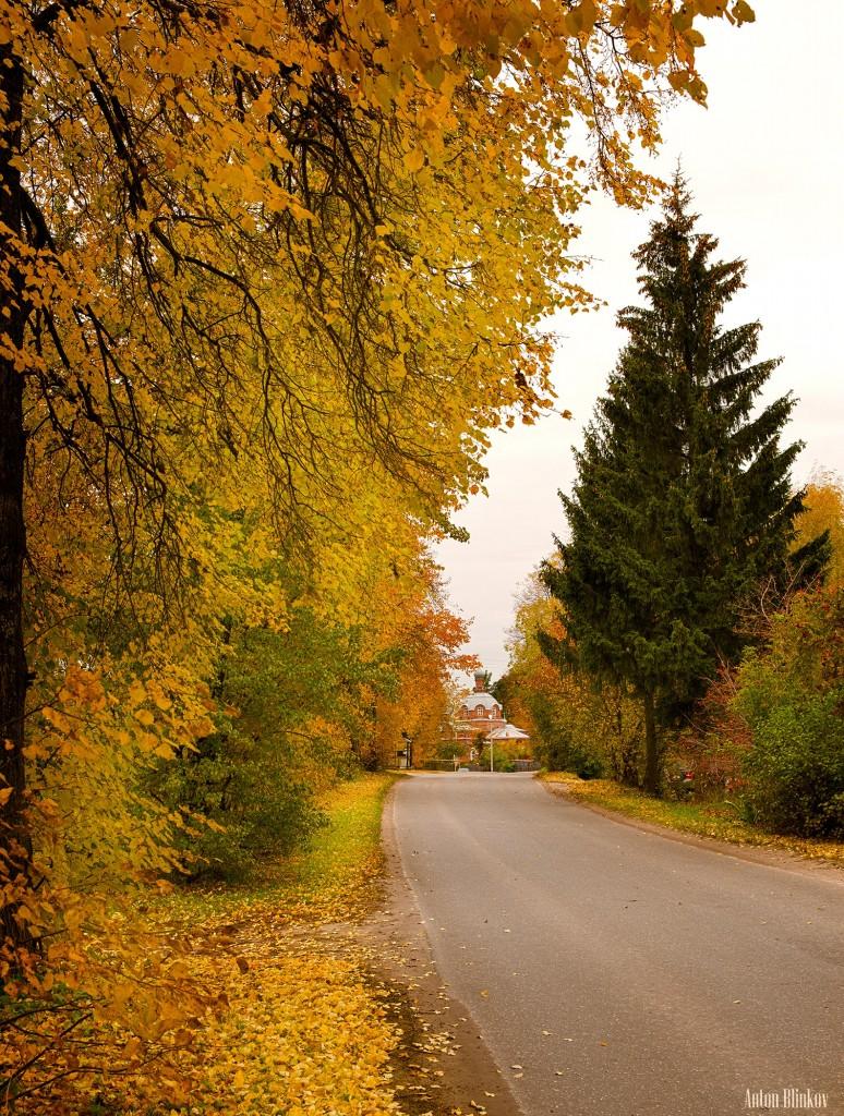 Осень в Гороховце