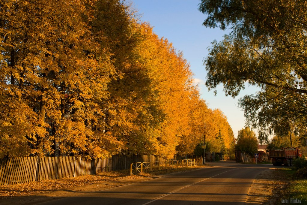 Осень в Меленках