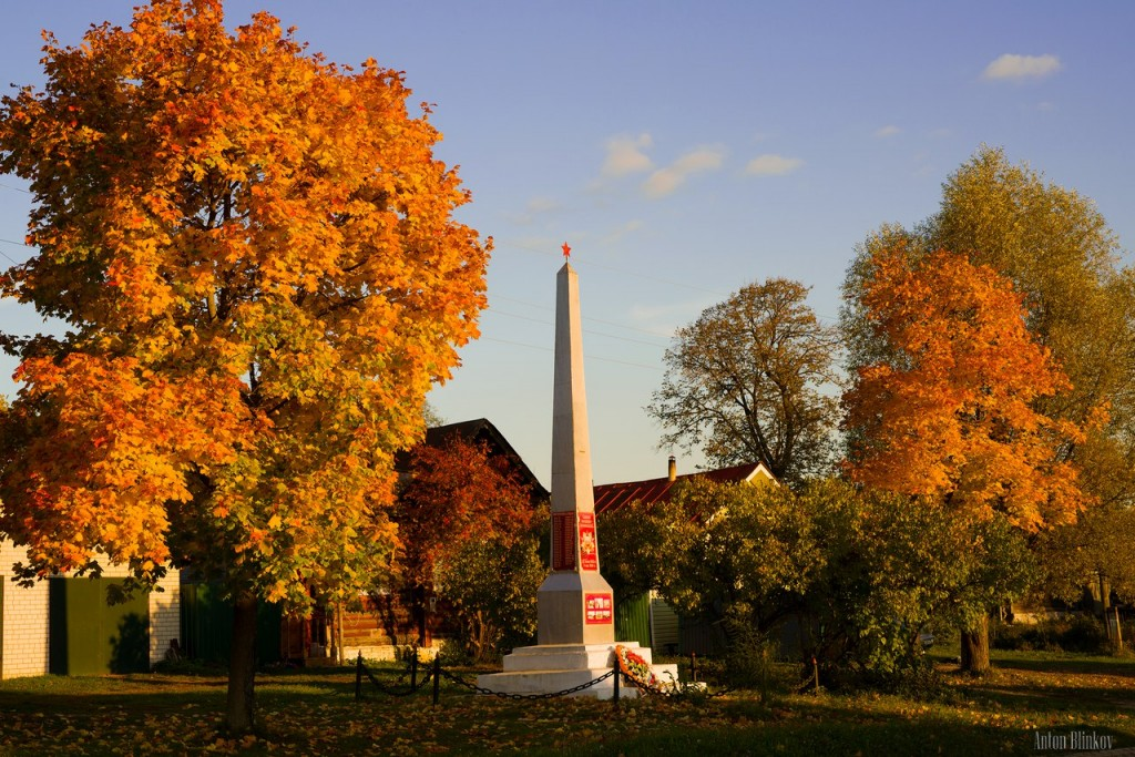 Осень в Меленковском р-не