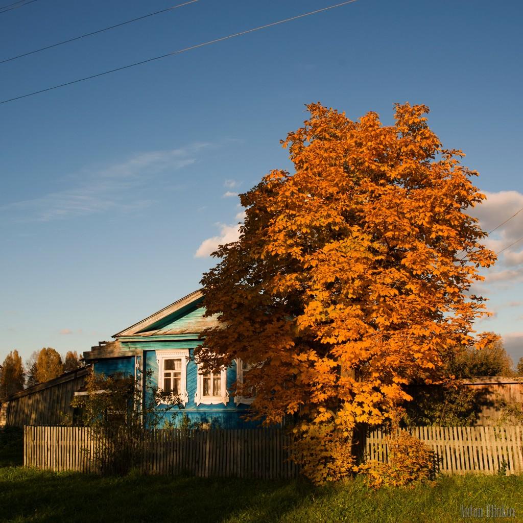 Осень в селе Архангел. Меленковский р-н