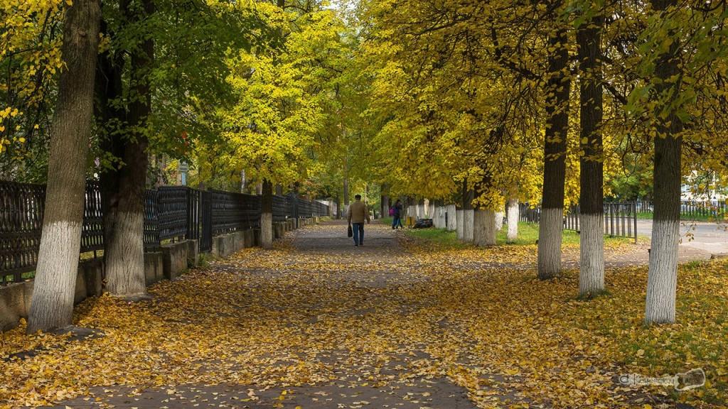 По улицам осеннего Коврова 05