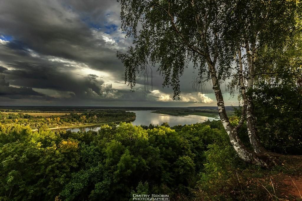 Природа Меленковского района 05