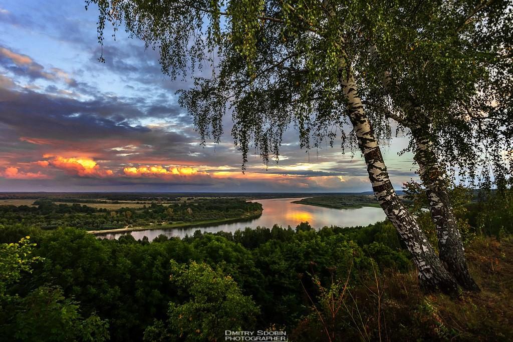 Природа Меленковского района 06