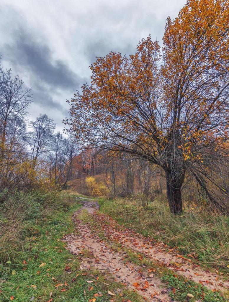 Прогулка вдоль реки Серой в Александрове 01