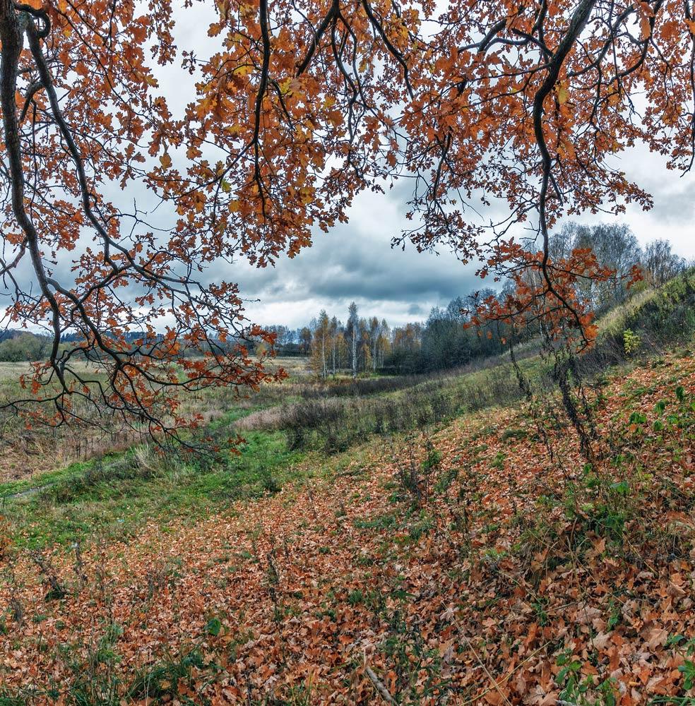 Прогулка вдоль реки Серой в Александрове 04