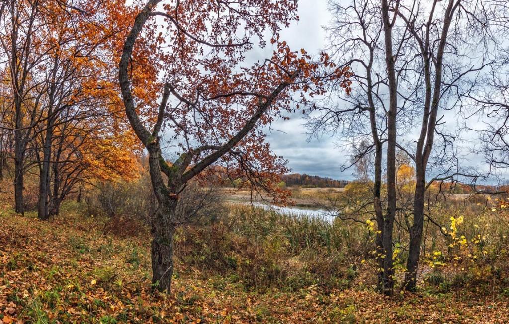 Прогулка вдоль реки Серой в Александрове 08
