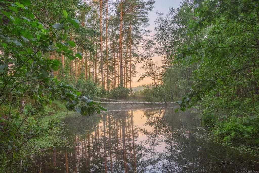 Тихое и спокойное озеро Саврасово, Владимирская обл, Вязниковский р-он. 01