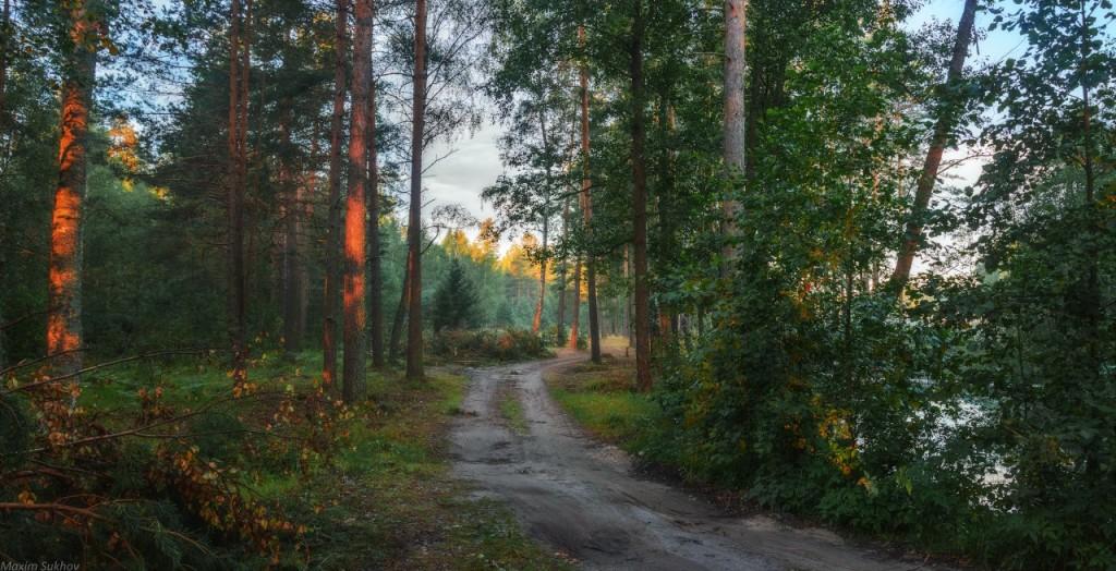 Тихое и спокойное озеро Саврасово, Владимирская обл, Вязниковский р-он. 04
