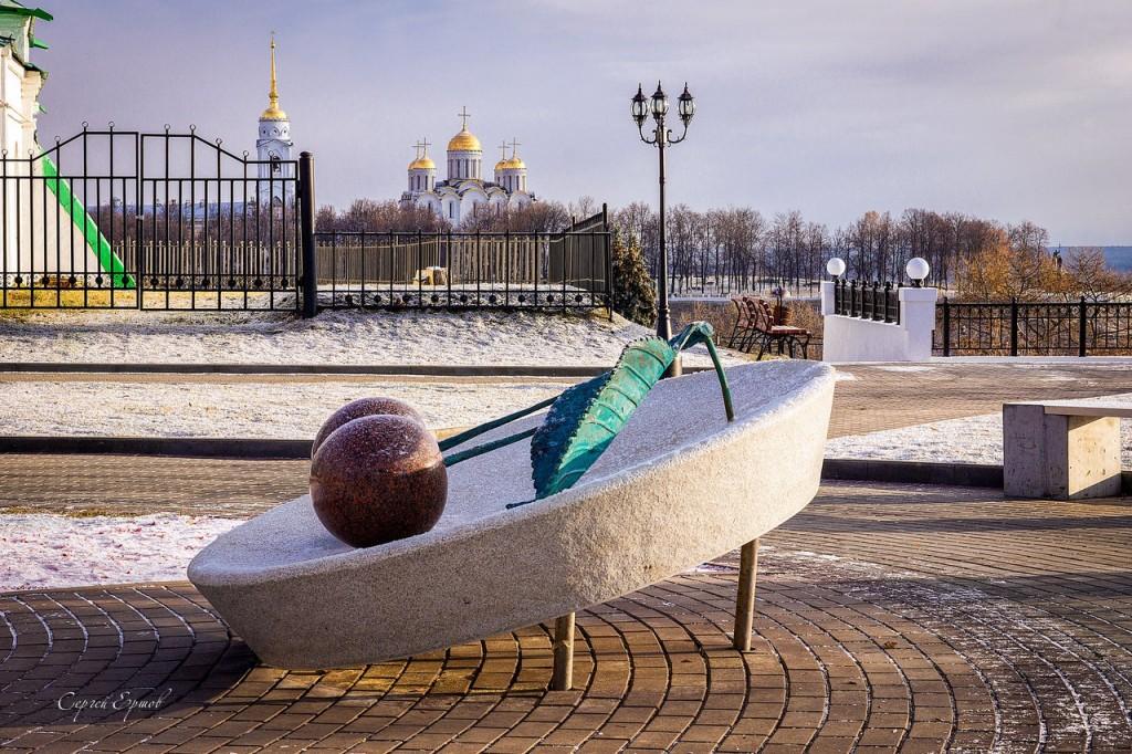 Владимирская зимняя вишня