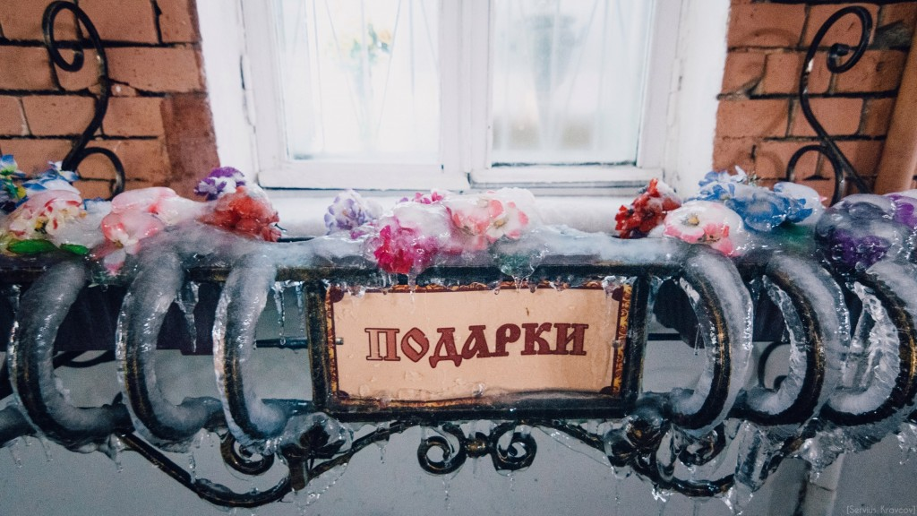 Замороженные цветы 02