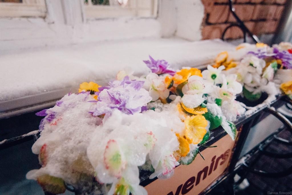 Замороженные цветы 03