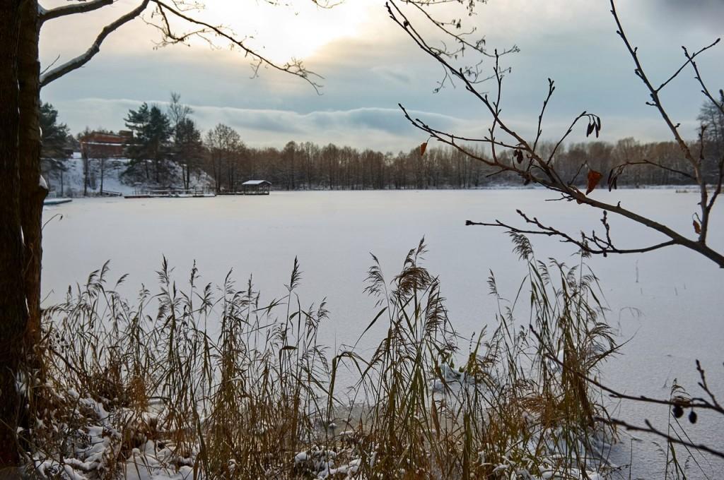 Зима вступает в свои права (загородный парк Владимира) 02