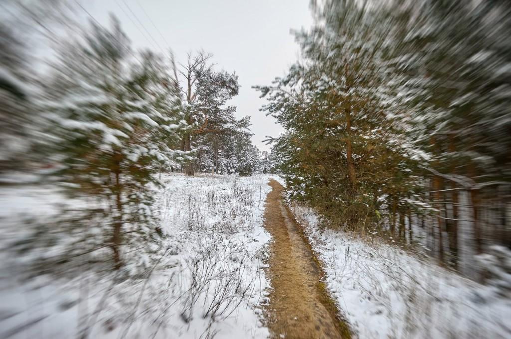Зима вступает в свои права (загородный парк Владимира) 07