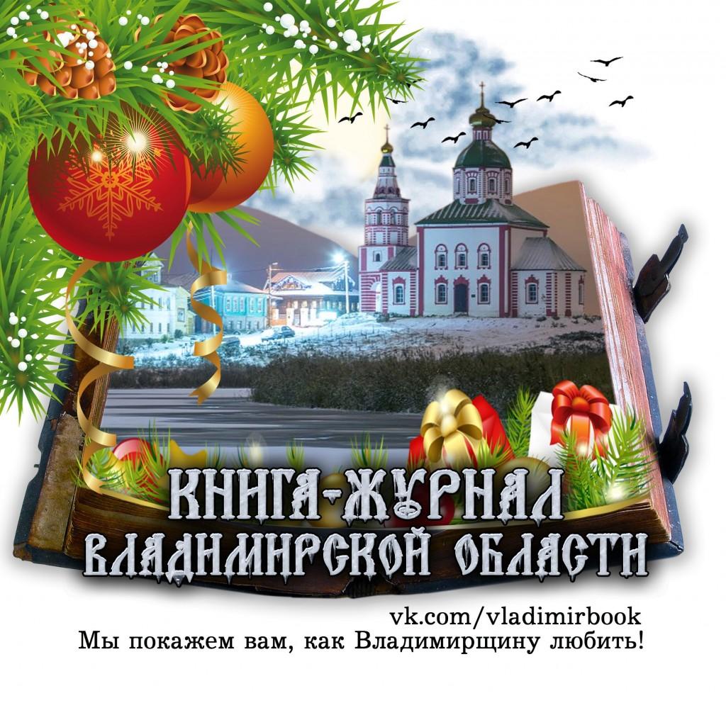 Книга-журнал Владимирской области, Новогодний логотип группы ВК