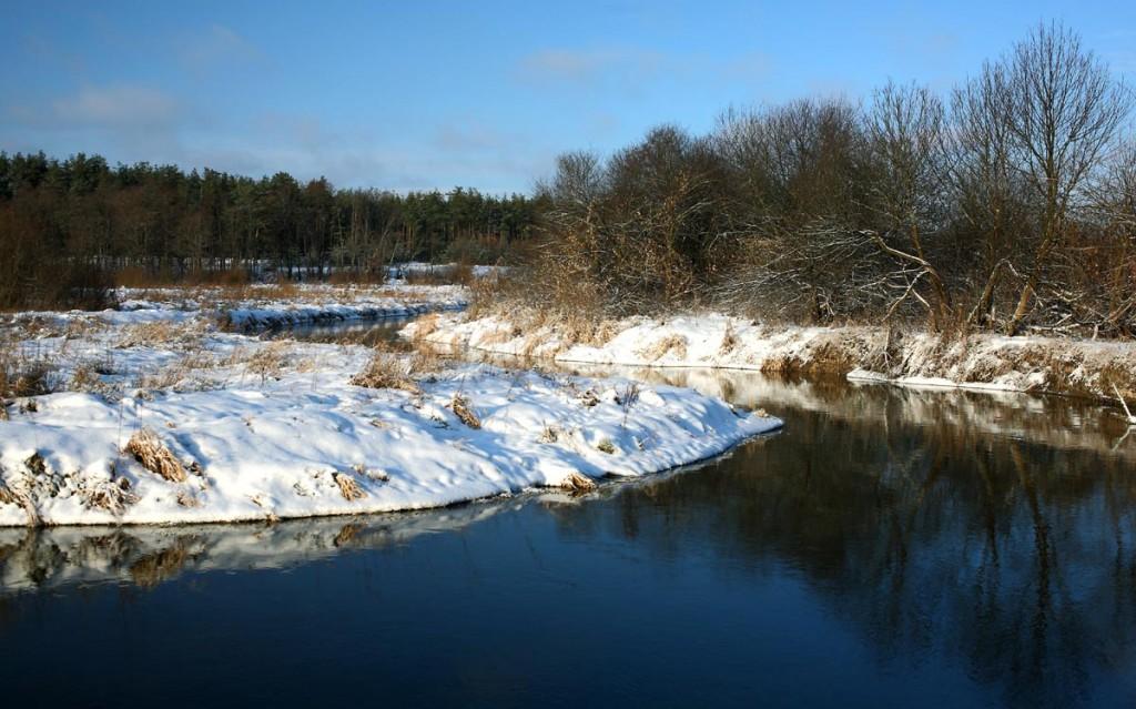 Конец ноября на реке Нерехте 01