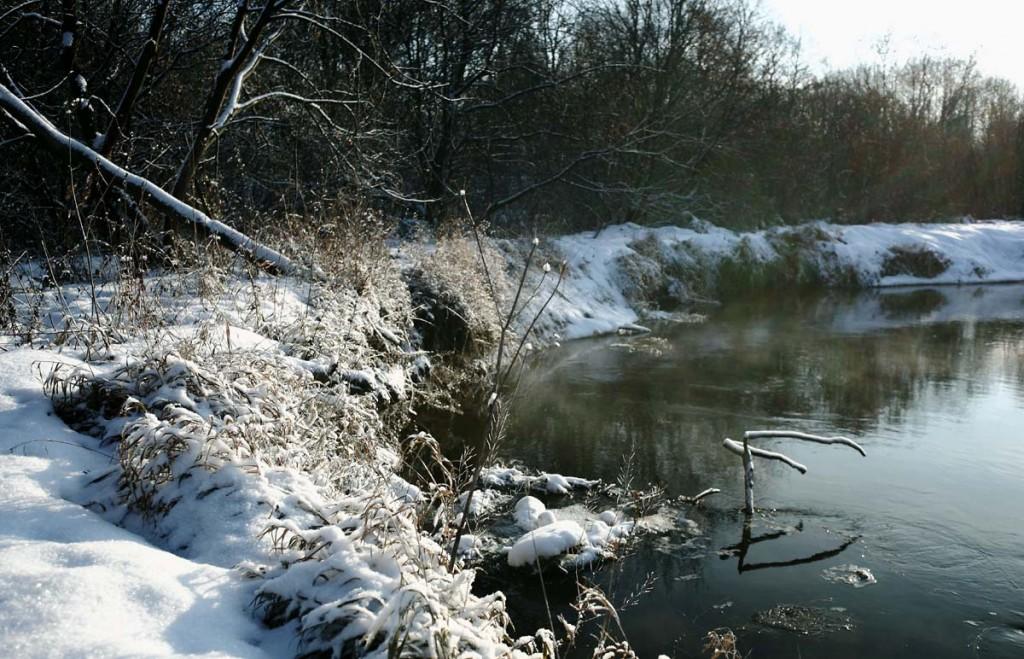 Конец ноября на реке Нерехте 03