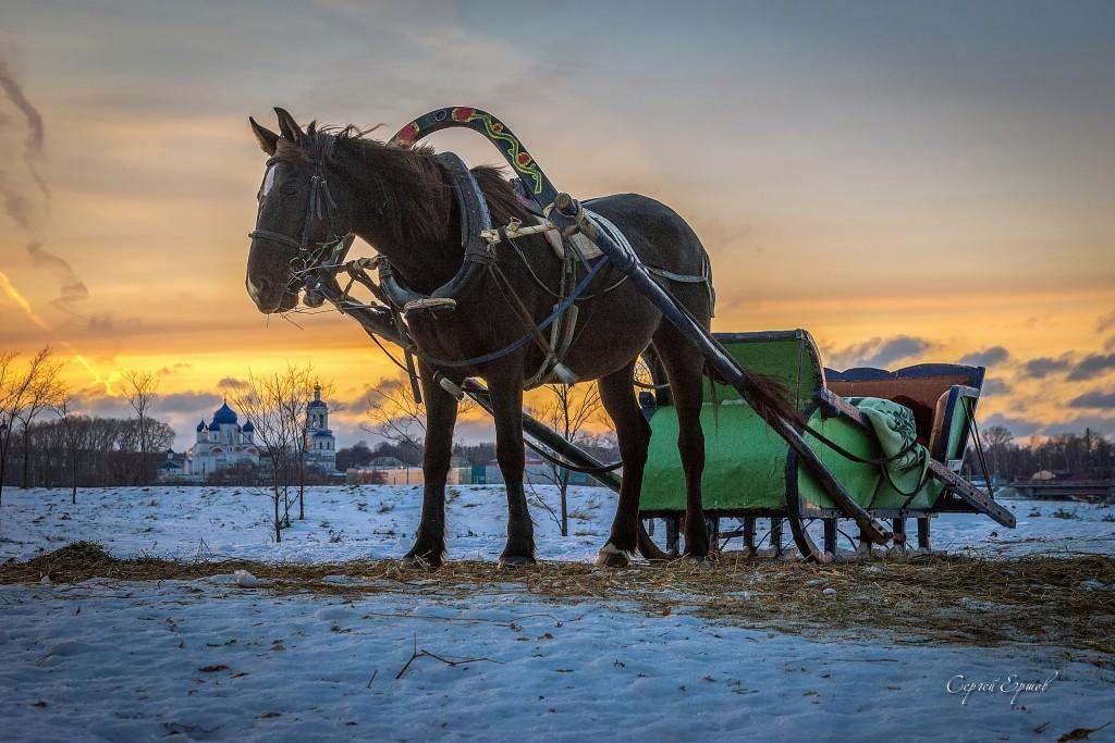Конные прогулки по Боголюбовскому лугу на закате