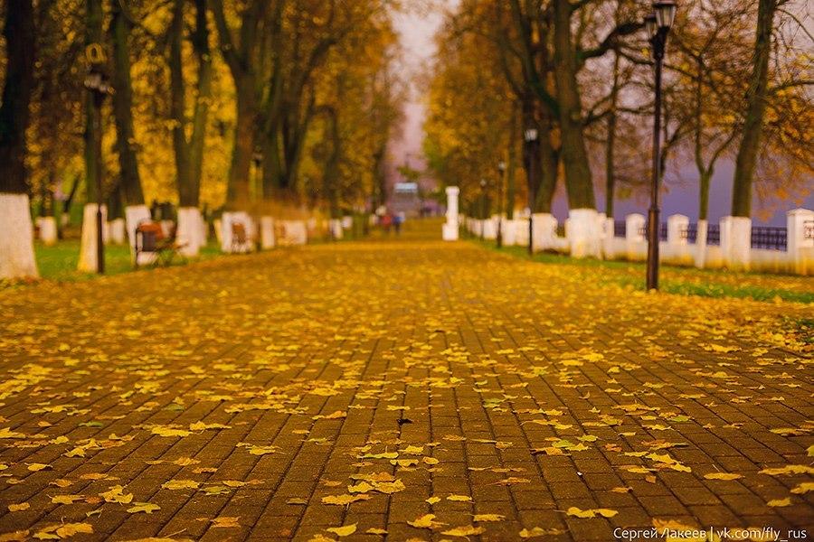 Осенняя пора во Владимире (2016) 06
