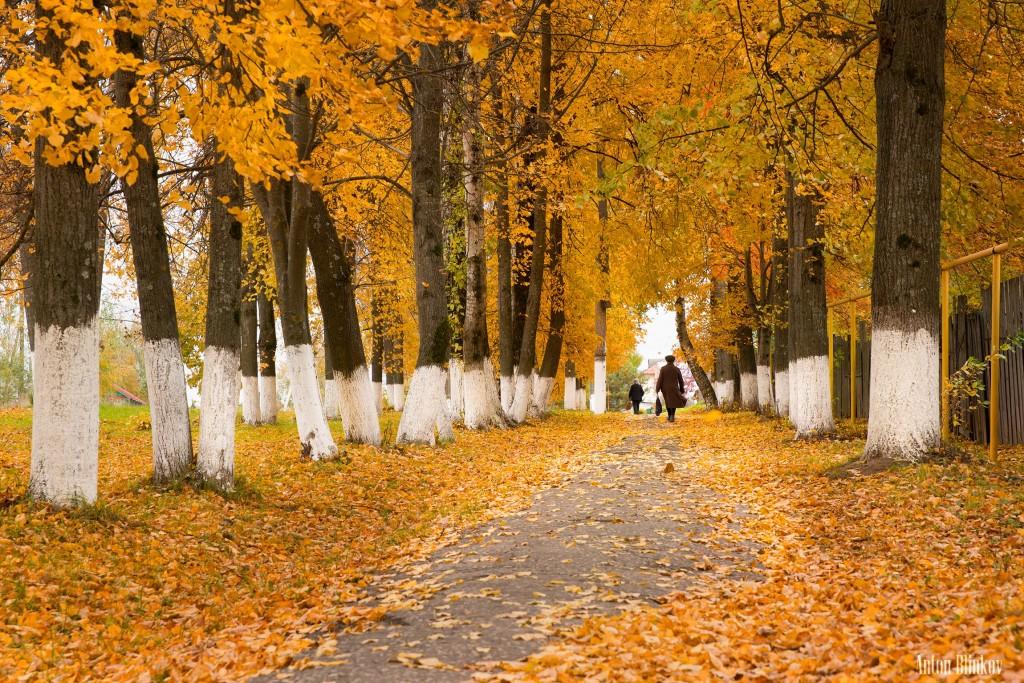 Осенью в Гороховце