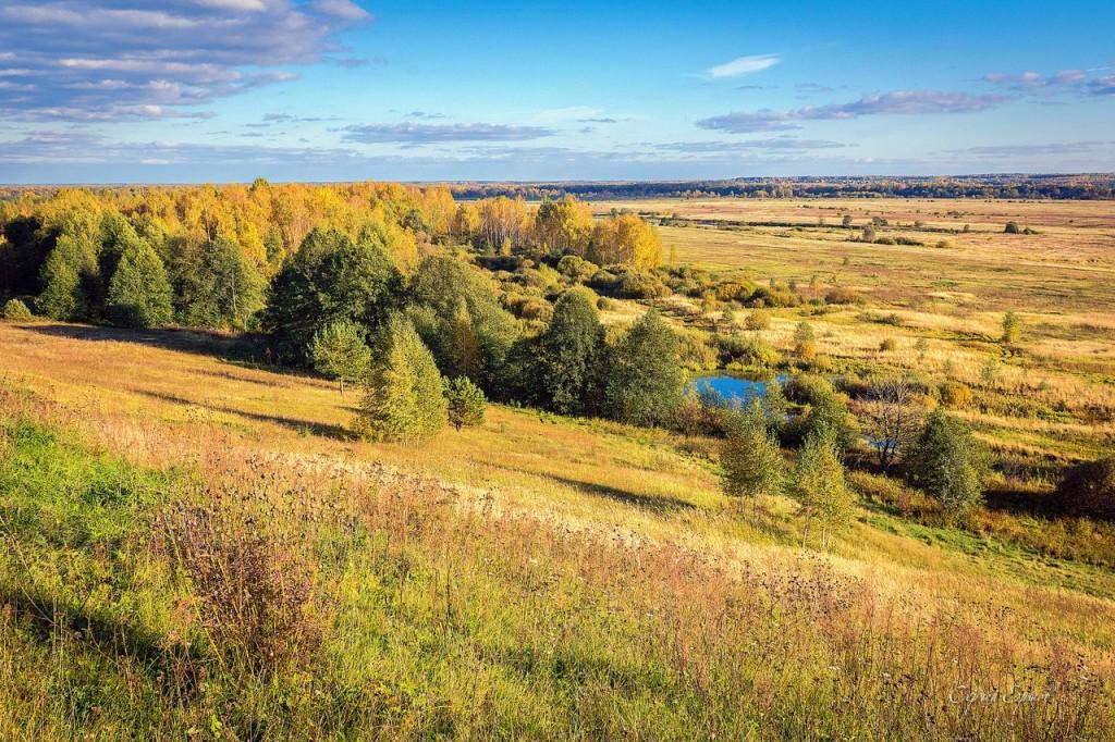 Осень на Российских просторах. Патакино. Пойма Клязьмы
