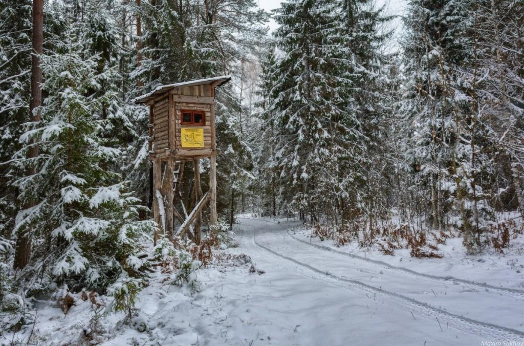 Охотничий домик, Вязниковский район 01
