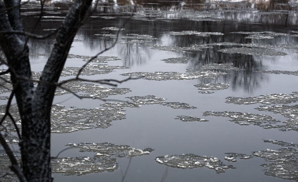 Шуга на реке Клязьма. Ковровский район 01