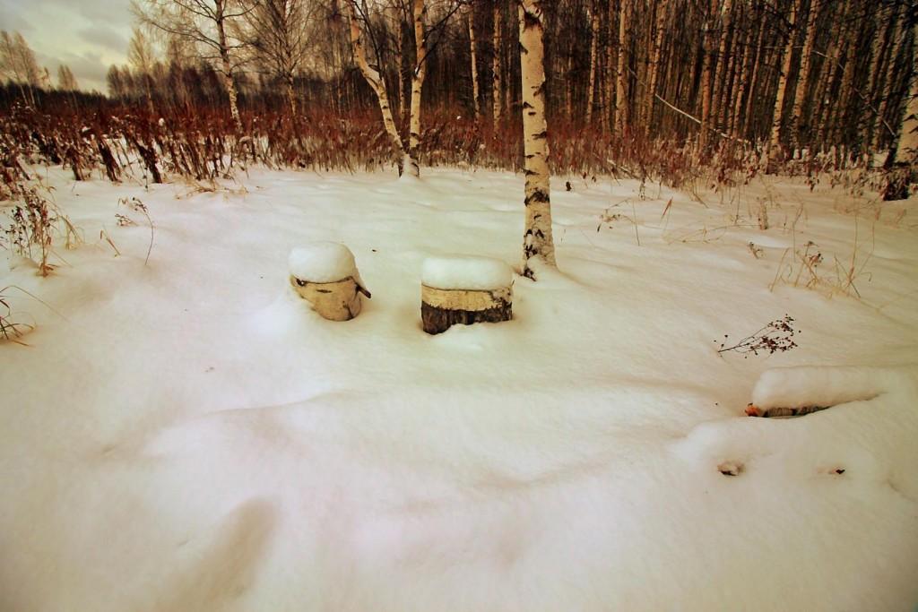 Зимнее путешествие к храму в Семёновке 10