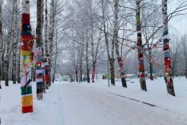 Морозная прогулка по парку Дружба (начало декабря 2016)