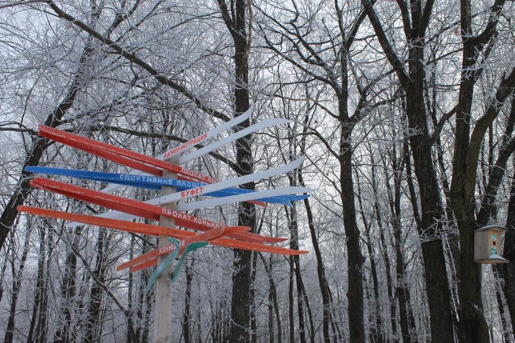 Морозная прогулка по парку Дружба (начало декабря 2016) 03