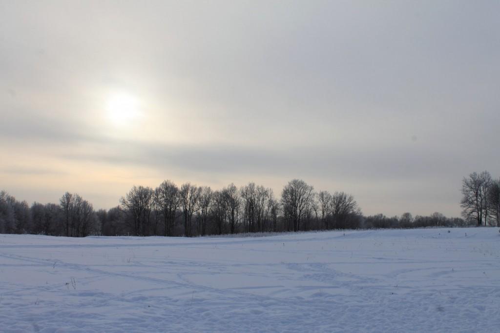 Морозная прогулка по парку Дружба (начало декабря 2016) 04