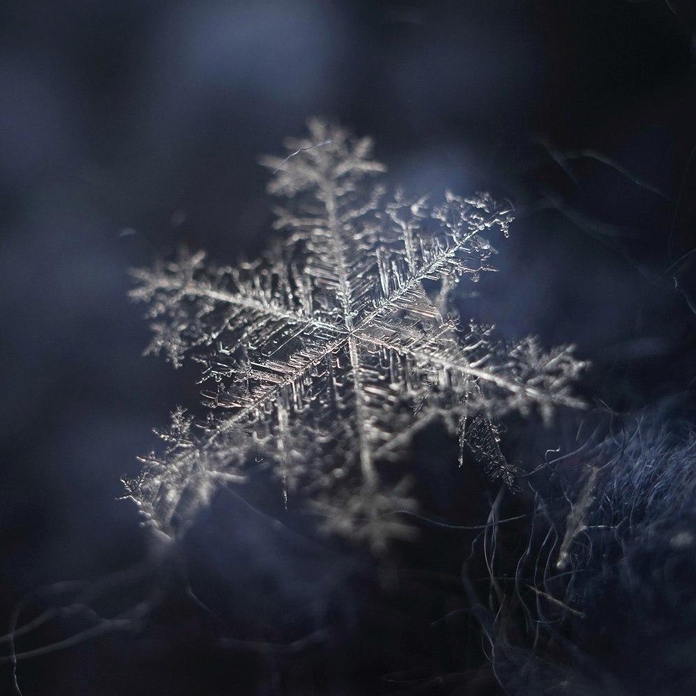 Новогодние снежинки 02