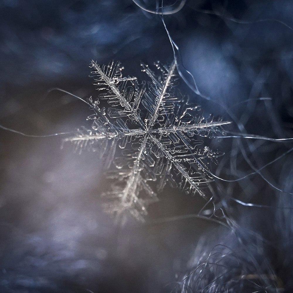 Новогодние снежинки 03