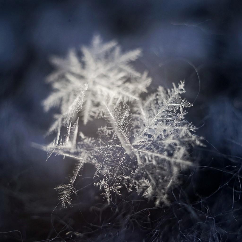 Новогодние снежинки 04