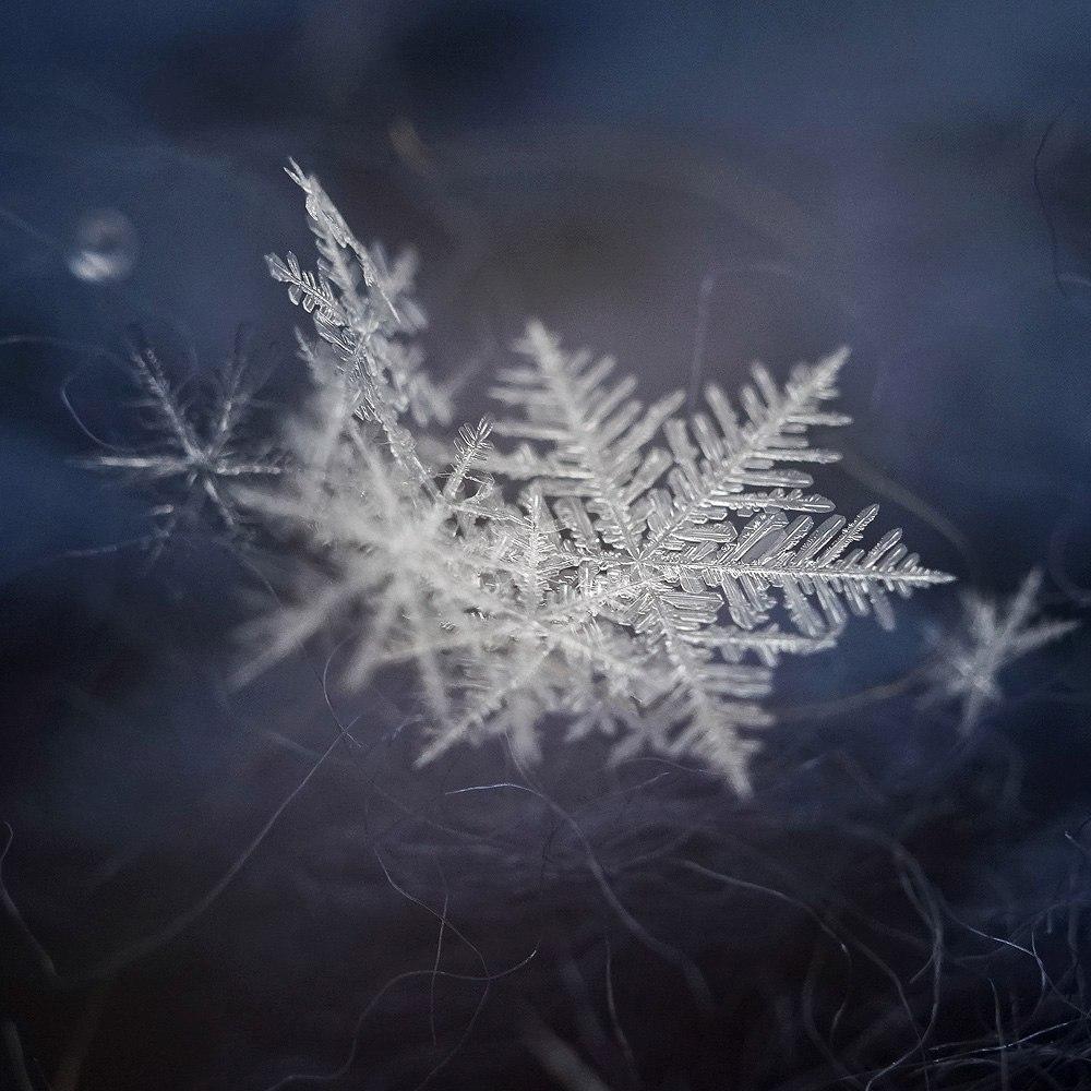 Новогодние снежинки 06
