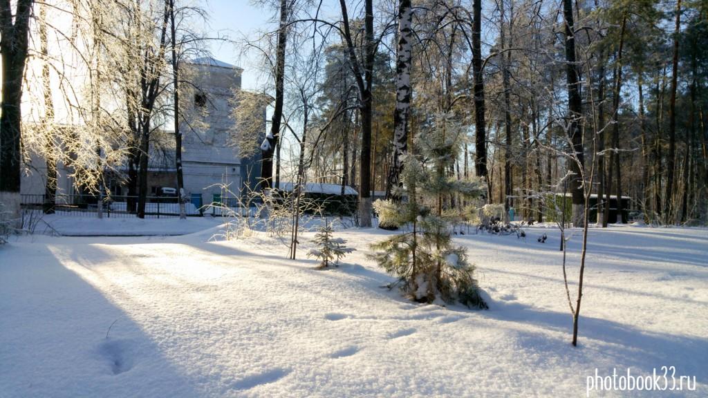 Чудесный солнечный зимний день на Вербовском 04