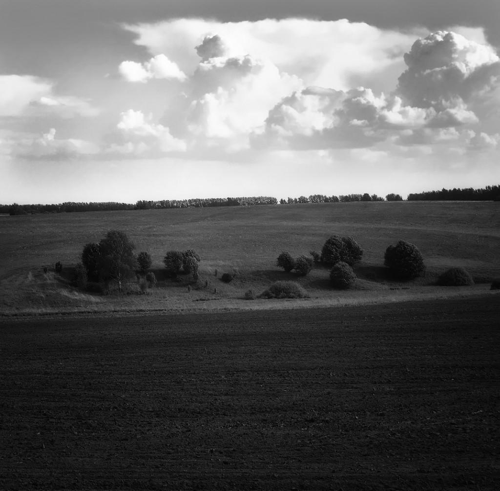окрестности села Подберезья, Суздальский р-н
