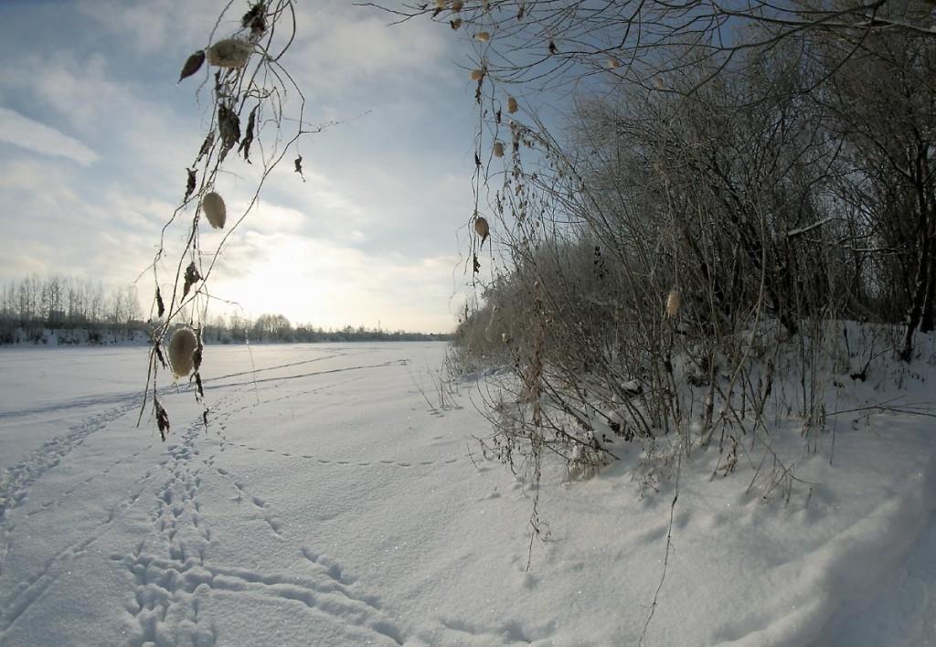 14 декабря на Клязьме недалеко от г.Коврова 02