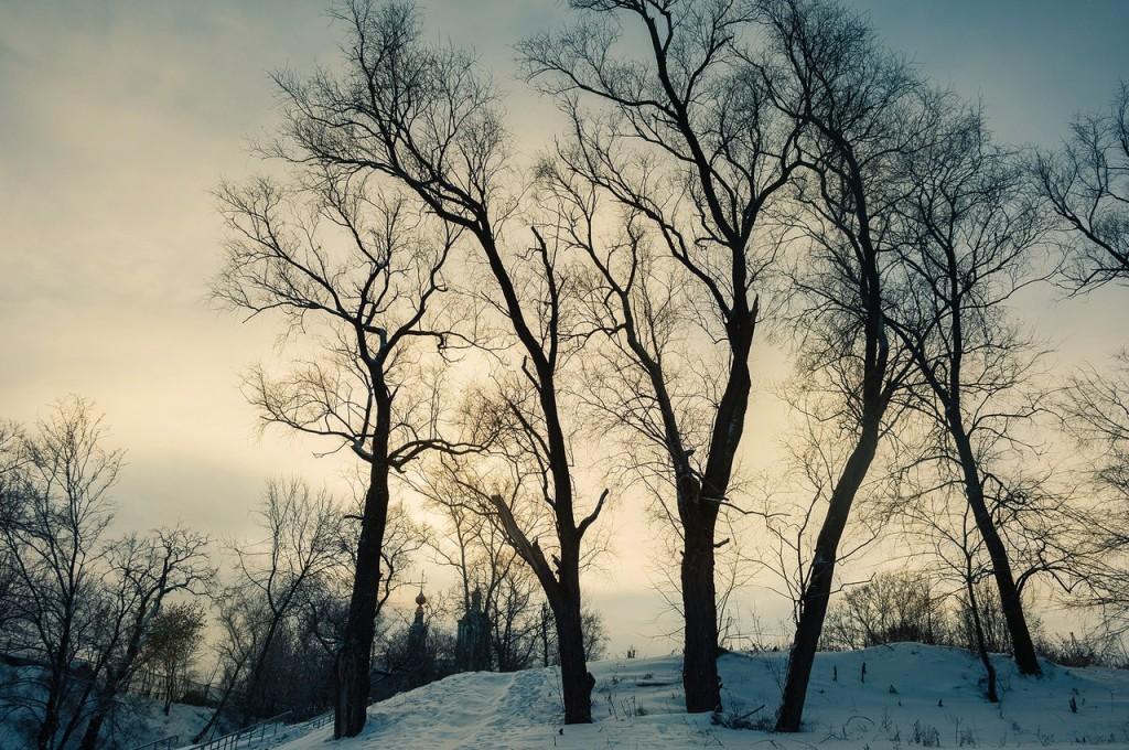 Владимир, декабрьский и снежный 06