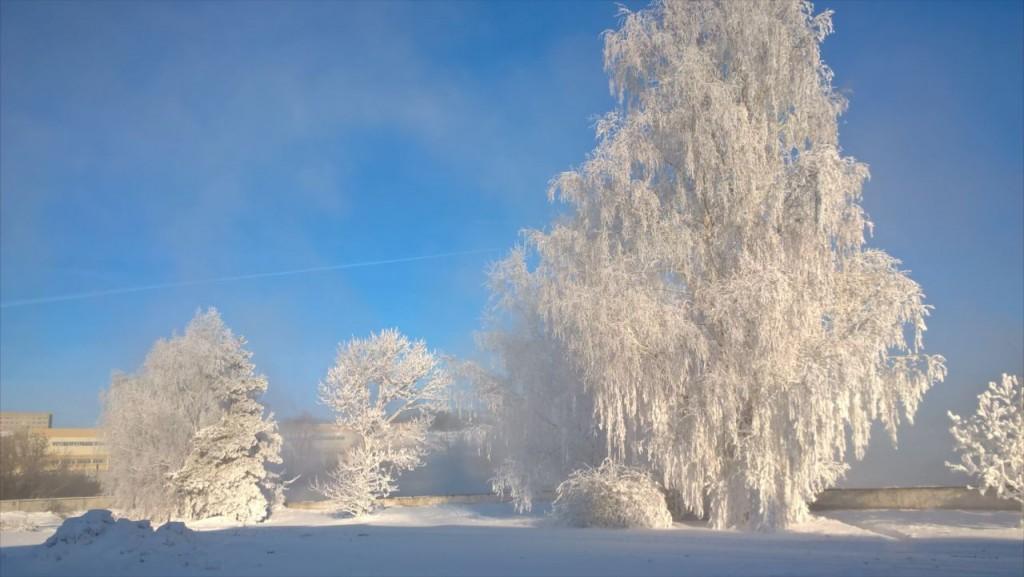 Завораживающая красота настоящей русской зимы на Владимирской земле. Пойма реки Клязьма. 01
