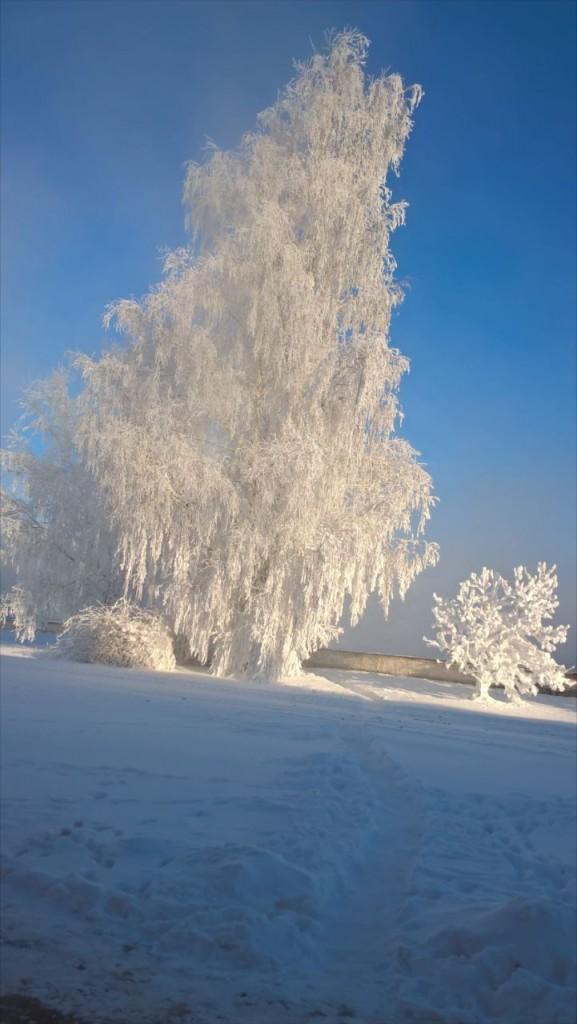 Завораживающая красота настоящей русской зимы на Владимирской земле. Пойма реки Клязьма. 03