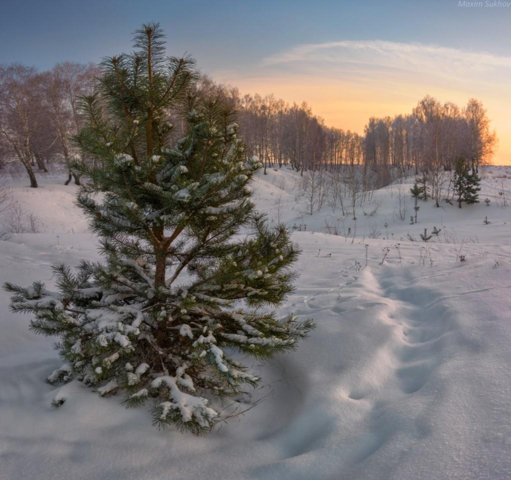 Зимняя сказка в Вязниковском районе 05
